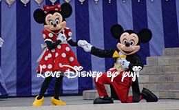 ミッキーとミニーのキス画像!キャッスルショー「ドリーム・アロング・ウィズ・ミッキー」