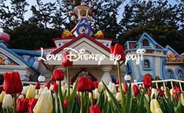 パークを彩るチューリップ&懐かしのランドの春イベント画像