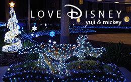 「ディズニーアンバサダーホテルのクリスマス飾付&夜景画像」8枚紹介!