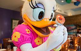 「ディズニーPCHグリルのデイジー」Disneyland Resort旅行記